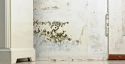 Prevent mould in your home